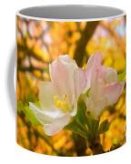 Sunshine On Apple Blossoms Coffee Mug