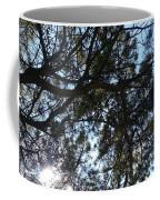 Sunshine Passes Pine  Coffee Mug