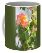 Sunshine Rose Coffee Mug