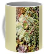 Super Succulents Coffee Mug