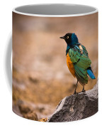 Superb Starling Coffee Mug by Adam Romanowicz