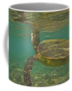 Surfacing Seaturtle Coffee Mug