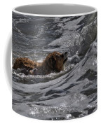 Surfer Dog 2 Coffee Mug