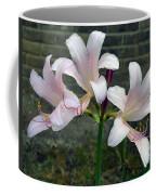 Surprise Lilies Coffee Mug