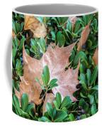 Surrounded Leaf Coffee Mug