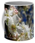 Surrounding Beauty Coffee Mug