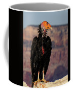 Surveying The Canyon Coffee Mug