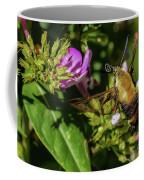 Surveyor Coffee Mug