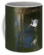 Suspended In Flight Coffee Mug