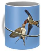 Swallow And Cub Coffee Mug