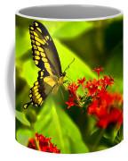 Swallow Tail Coffee Mug