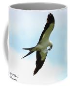 Swallow-tailed Kite Eating Coffee Mug