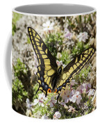 Swallowtail At Sand Wash Coffee Mug