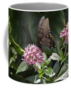 Swallowtail Buterfly Coffee Mug