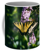 Swallowtail Butterfly At The Maryland Zoo Coffee Mug
