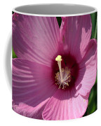 Swamp Rose Mallow Coffee Mug