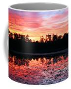 Swamp Sunset Coffee Mug