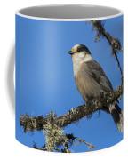 Swampy Perch Coffee Mug
