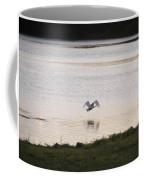 Swan In Flight Coffee Mug