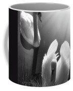 Swan Lake In Winter -  Kingsbury Nature Coffee Mug