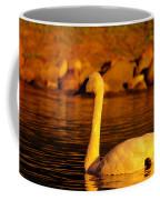 Swan Near Sundown Coffee Mug