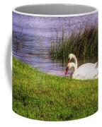 Swan Pair Warm Color Coffee Mug