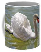 Swan Swimming By Coffee Mug