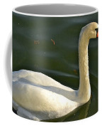 Swan Up Close Coffee Mug