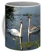 Swans In The Sunshine Coffee Mug