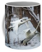 Swans Landing Coffee Mug