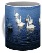 Swans Sligo Ireland Coffee Mug