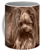 Sweet Baby Coffee Mug