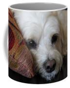 Sweet Baby Girl Coffee Mug
