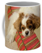 Sweet Dog Face Coffee Mug