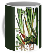 Sweet Flag Or Calamus, Acorus Calamus Coffee Mug