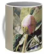 Sweet Pink Peony Bud Coffee Mug