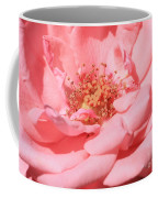 Sweet Pink Rose  Coffee Mug
