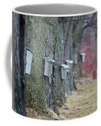 Sweet Season.. Coffee Mug