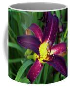 Sweet Wine Coffee Mug