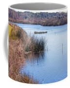 Sweetwater Wetland Pond Coffee Mug
