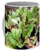 Swiss Chard In A Vegetable Garden 1 Coffee Mug