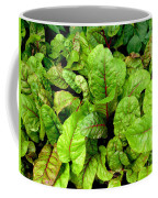 Swiss Chard In A Vegetable Garden 4 Coffee Mug