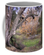 Sycamore Grove Fall Coffee Mug