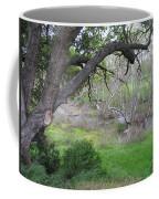 Sycamore Grove Coffee Mug
