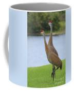Sychronized Sandhills Coffee Mug