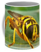 Syrphid Eye To Eye Coffee Mug