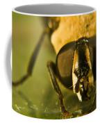 Syrphid Eyes Coffee Mug