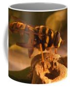 Syrphid Fly On Fossil Crinoid Coffee Mug