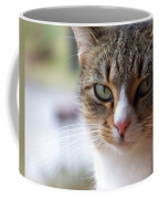 Tabby Cat Portrait Coffee Mug