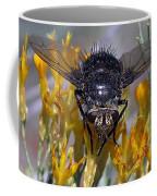 Tachinid Fly Coffee Mug